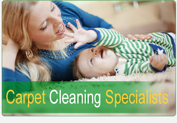 Carpet Cleaning Specialist Chandler, AZ